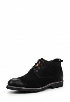 Мужские осенние ботинки Dino Ricci