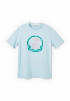 Мужская голубая осенняя футболка
