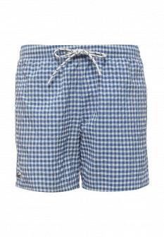Мужские синие шорты Lacoste
