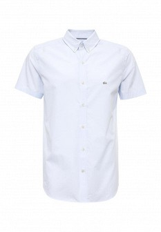 Мужская голубая рубашка Lacoste