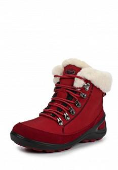 Женские красные осенние кожаные трекинговые ботинки