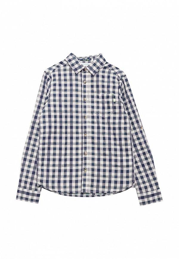 Рубашка Acoola Acoola AC008EBACXL6 acoola m 20216120008