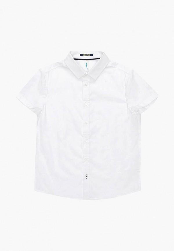 Рубашка Acoola Acoola AC008EBBBAC2