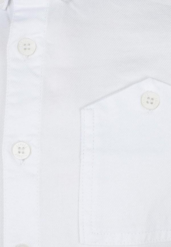 Рубашка Acoola 11901531: изображение 3