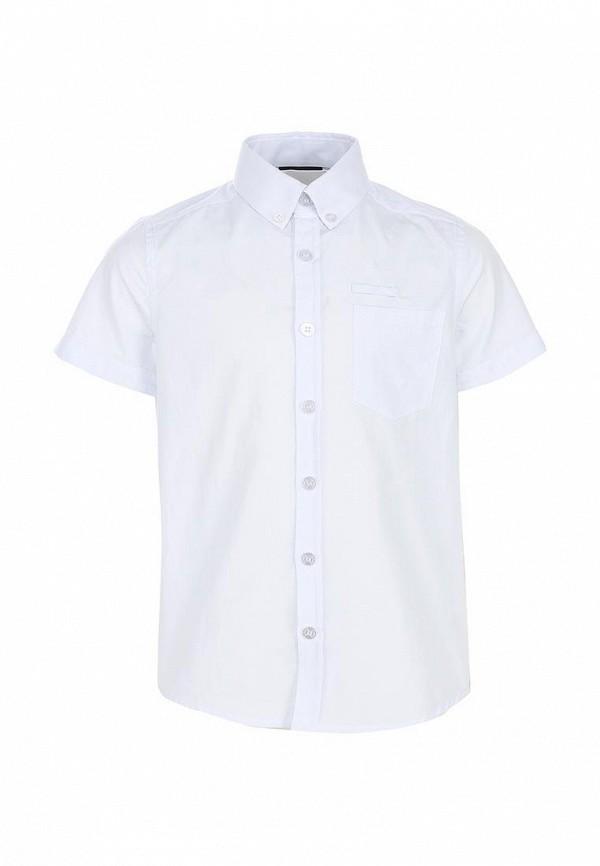 Рубашка Acoola 11901621: изображение 1
