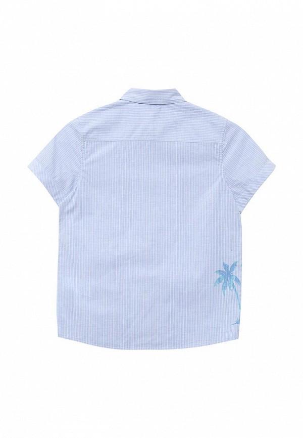 Рубашка Acoola 20120290007: изображение 2