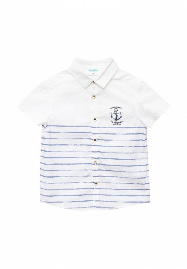 Рубашка Acoola Acoola AC008EBTQH33 кардиган acoola acoola ac008ebnmf36