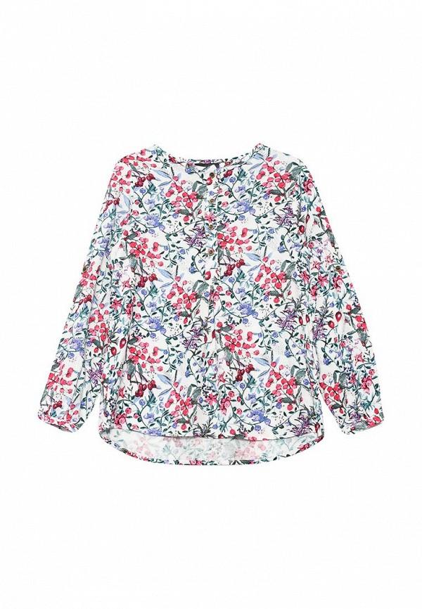 Блуза Acoola 20220260010: изображение 1