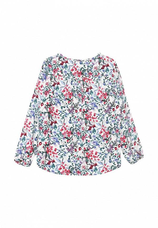 Блуза Acoola 20220260010: изображение 2