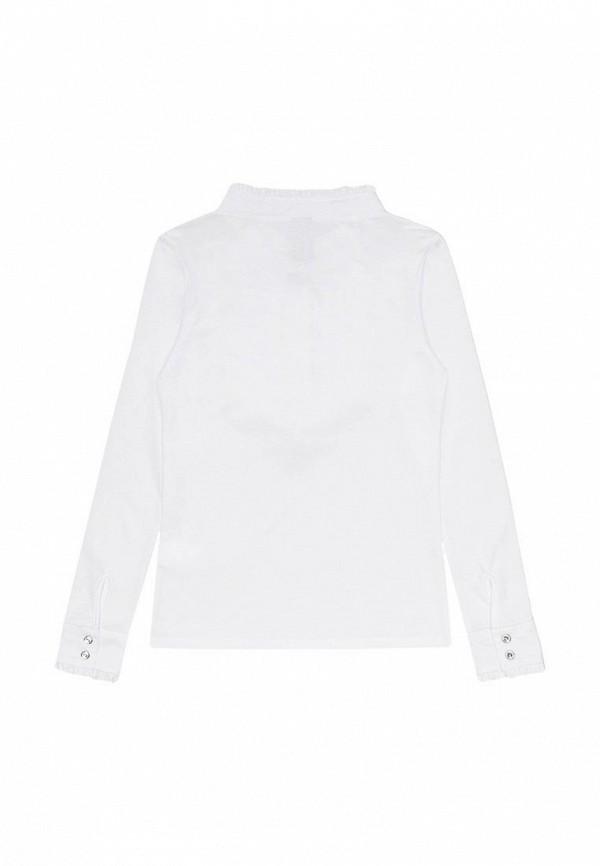 Блуза Acoola 20210260019: изображение 2