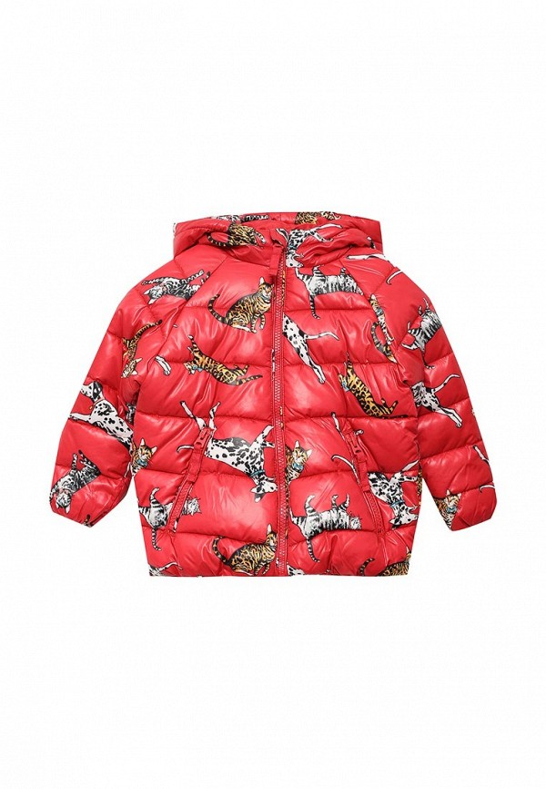 Куртка утепленная Acoola Acoola AC008EGWDE39