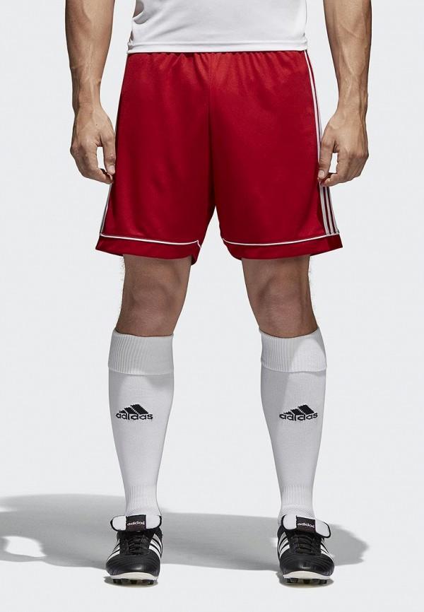 Шорты спортивные adidas adidas AD002EMAMBZ3 брюки спортивные adidas performance adidas performance ad094emqia23