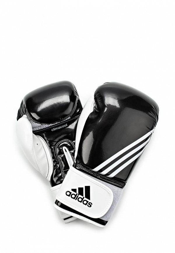 Перчатки боксерские adidas Combat adidas Combat AD015DUDXP00
