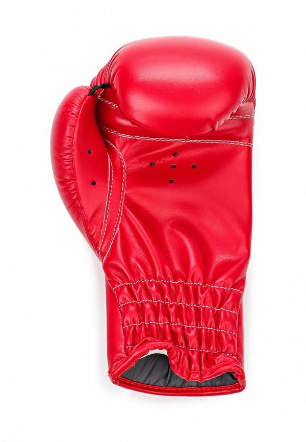 Женские перчатки Adidas Combat (Адидас Комбат) adiBK01: изображение 3