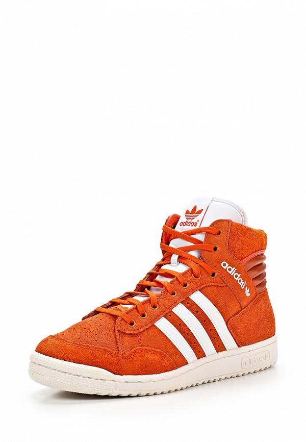Мужские кеды Adidas Originals (Адидас Ориджиналс) M25448: изображение 1