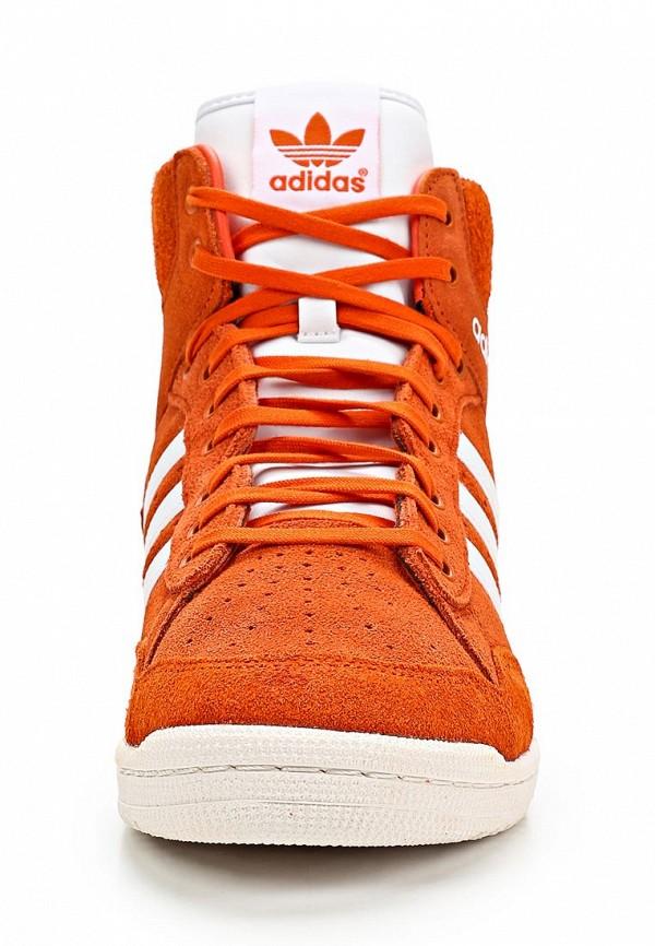 Мужские кеды Adidas Originals (Адидас Ориджиналс) M25448: изображение 5