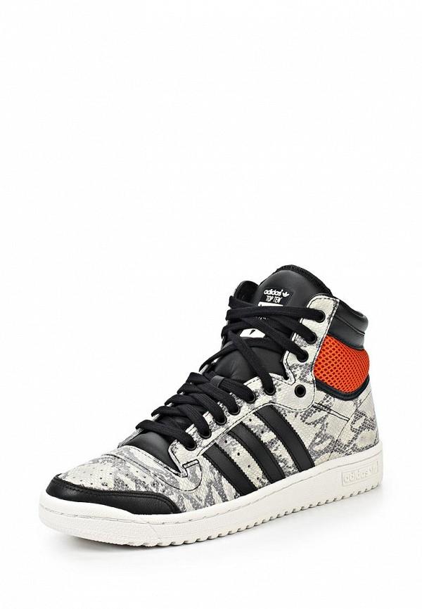Мужские кеды Adidas Originals (Адидас Ориджиналс) M25601: изображение 1