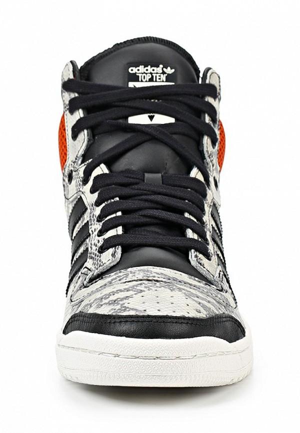 Мужские кеды Adidas Originals (Адидас Ориджиналс) M25601: изображение 5