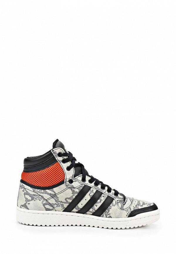 Мужские кеды Adidas Originals (Адидас Ориджиналс) M25601: изображение 7