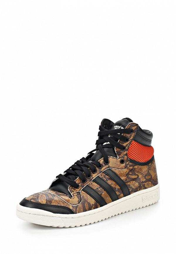 Мужские кеды Adidas Originals (Адидас Ориджиналс) M25602: изображение 1