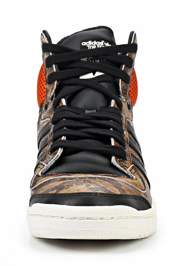 Мужские кеды Adidas Originals (Адидас Ориджиналс) M25602: изображение 6