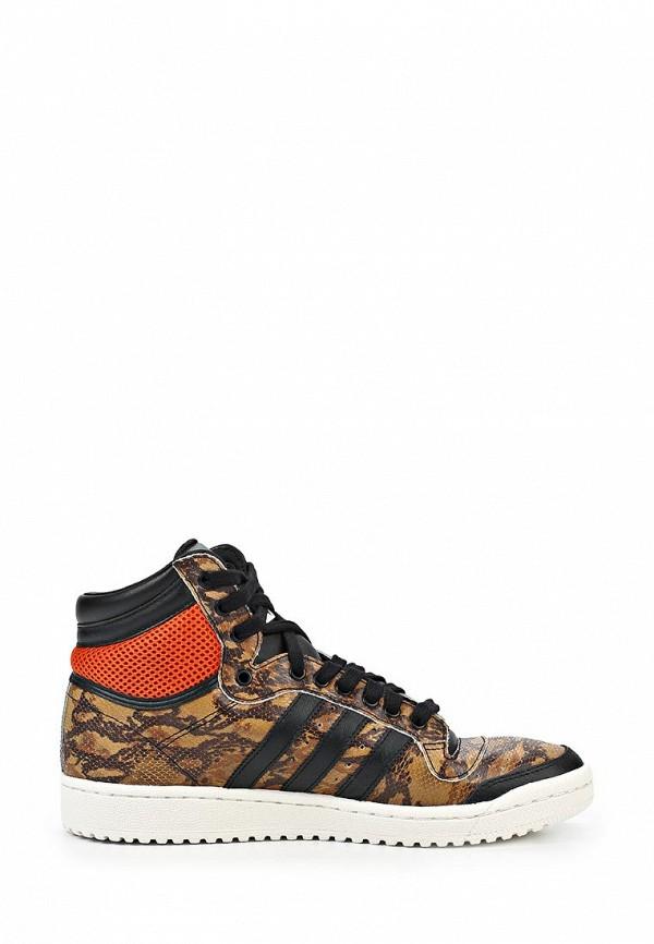 Мужские кеды Adidas Originals (Адидас Ориджиналс) M25602: изображение 8