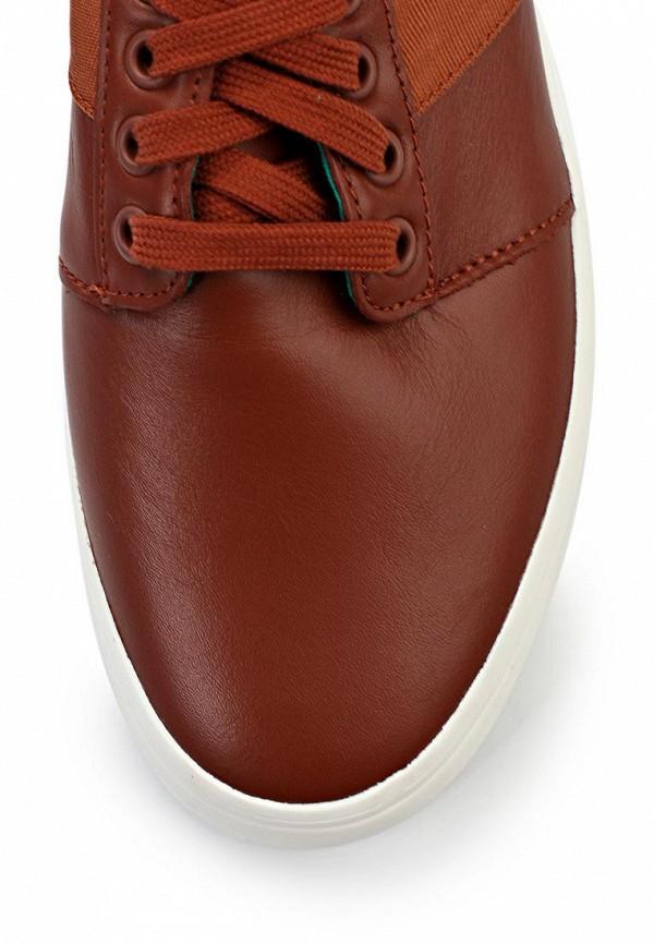 Мужские кеды Adidas Originals (Адидас Ориджиналс) M25808: изображение 5