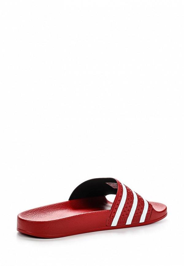 Мужские сланцы Adidas Originals (Адидас Ориджиналс) 288193: изображение 2
