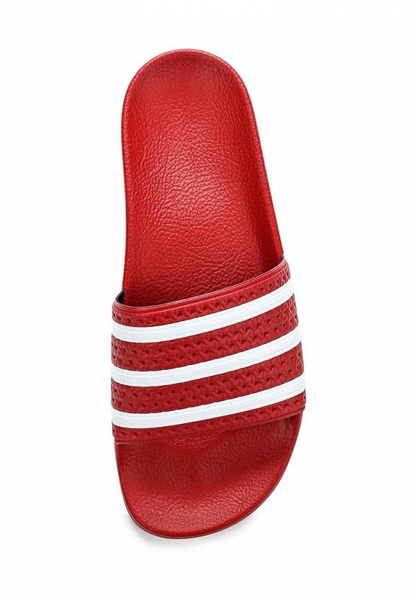 Мужские сланцы Adidas Originals (Адидас Ориджиналс) 288193: изображение 4