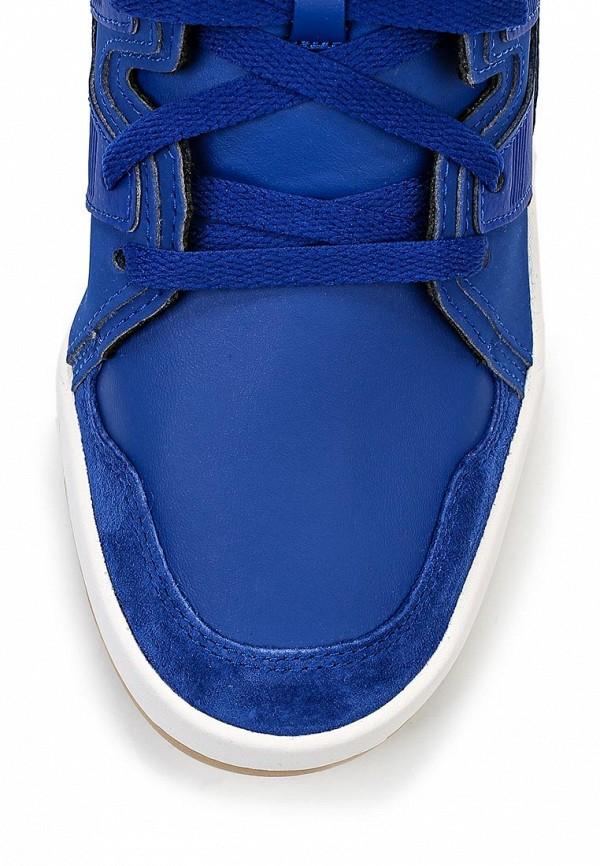 Мужские кеды Adidas Originals (Адидас Ориджиналс) M17032: изображение 4