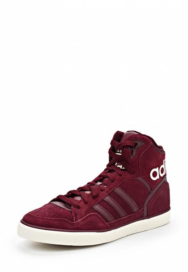 Женские кеды Adidas Originals (Адидас Ориджиналс) M20866: изображение 1