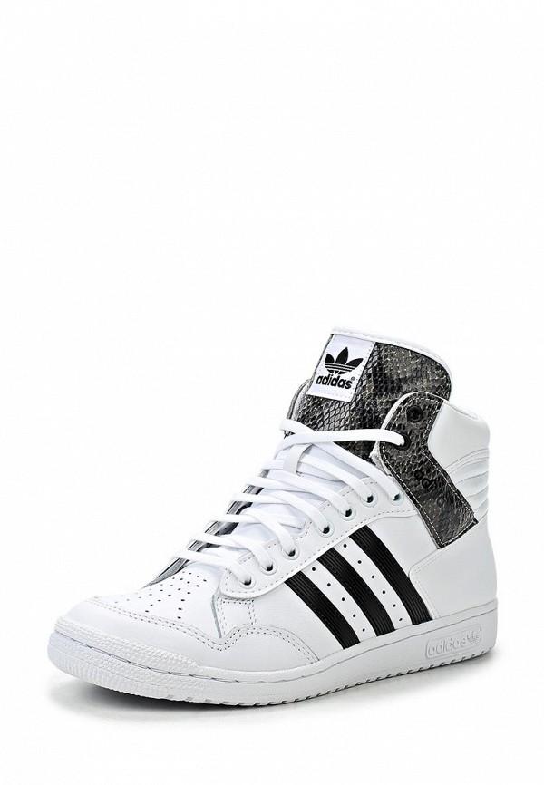 Женские кроссовки Adidas Originals (Адидас Ориджиналс) M20881: изображение 1