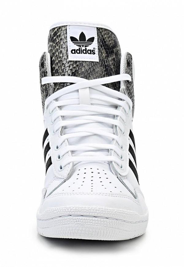 Женские кроссовки Adidas Originals (Адидас Ориджиналс) M20881: изображение 5