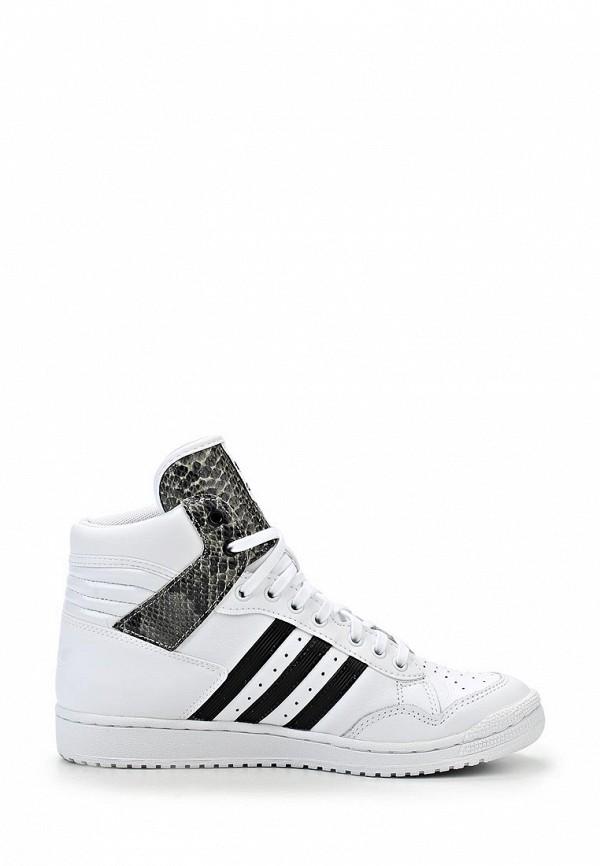 Женские кроссовки Adidas Originals (Адидас Ориджиналс) M20881: изображение 7