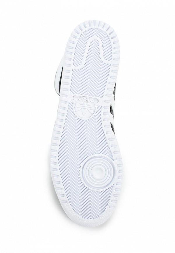 Женские кеды Adidas Originals (Адидас Ориджиналс) B35338: изображение 3