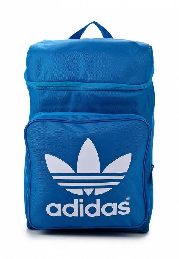 Спортивный рюкзак Adidas Originals (Адидас Ориджиналс) F76909: изображение 1
