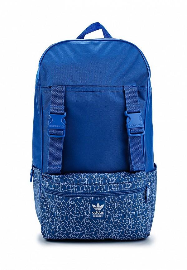 Спортивный рюкзак Adidas Originals (Адидас Ориджиналс) S20095: изображение 1