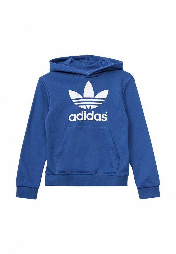 Толстовка Adidas Originals (Адидас Ориджиналс) AO0072: изображение 1