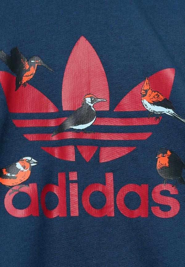 Спортивный костюм Adidas Originals (Адидас Ориджиналс) S95939: изображение 3