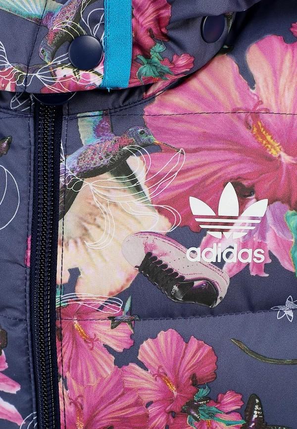 Пуховик Adidas Originals (Адидас Ориджиналс) M66003: изображение 2