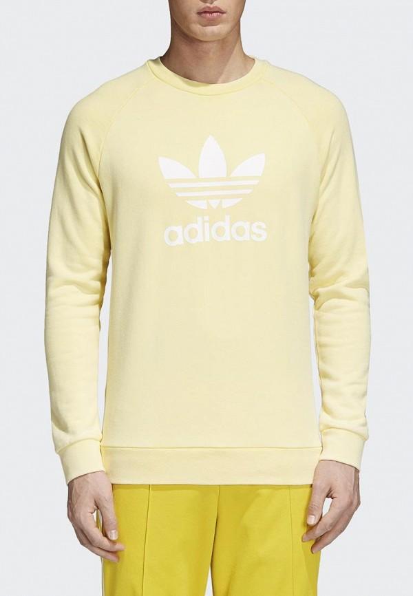 Купить Свитшот adidas Originals, adidas Originals AD093EMALOG2, желтый, Весна-лето 2018