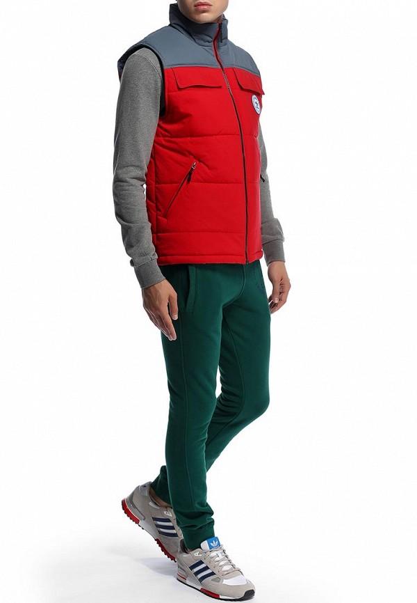 Мужские спортивные брюки Adidas Originals (Адидас Ориджиналс) M69896: изображение 6