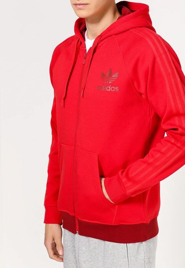 Толстовка Adidas Originals (Адидас Ориджиналс) AB7585: изображение 2