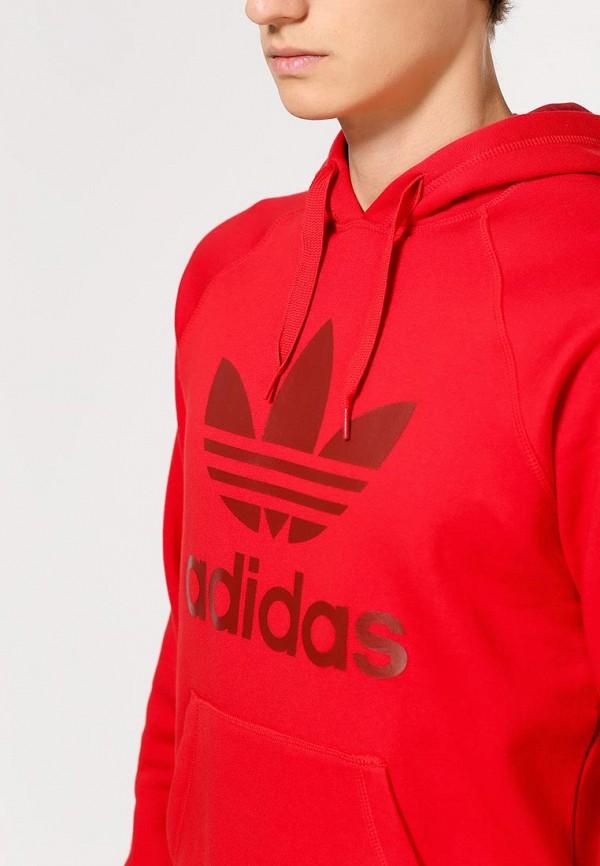 Мужские худи Adidas Originals (Адидас Ориджиналс) AB7592: изображение 2