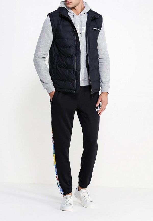 Мужские спортивные брюки Adidas Originals (Адидас Ориджиналс) AB7693: изображение 2