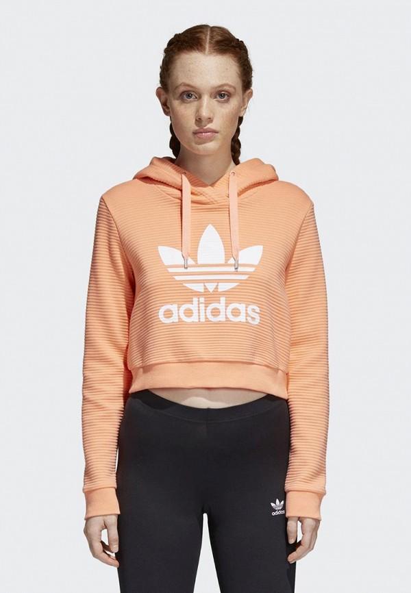 Худи adidas OriginalsХуди adidas Originals. Цвет: оранжевый. Сезон: Весна-лето 2018. С бесплатной доставкой и примеркой на Lamoda.<br><br>Цвет: оранжевый<br>Коллекция: Весна-лето 2018<br>Сезонность: мульти<br>Страна-изготовитель: Вьетнам<br>Пол: women