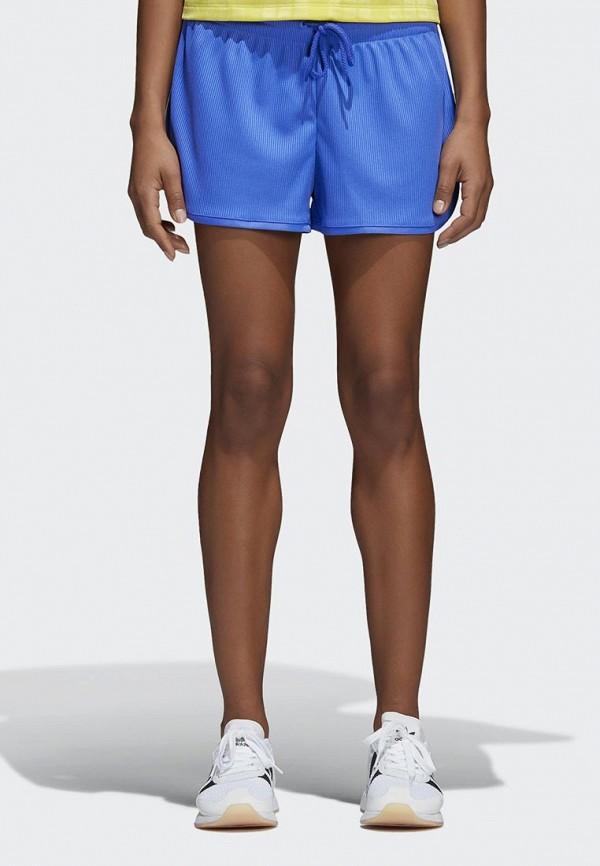 Купить Шорты спортивные adidas Originals, adidas Originals AD093EWALOQ7, синий, Весна-лето 2018