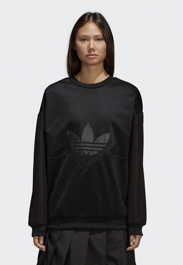 Свитшот adidas Originals adidas Originals AD093EWALOR6