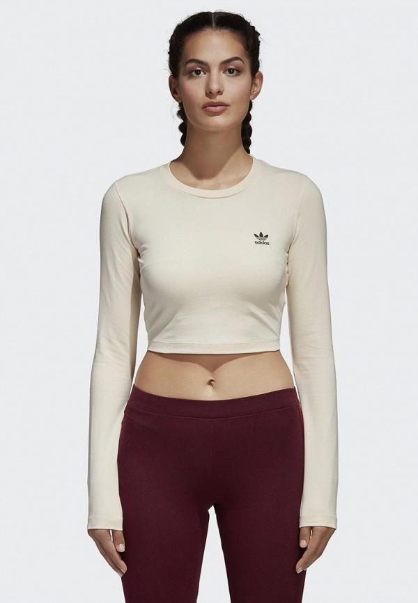 Купить Лонгслив adidas Originals, adidas Originals AD093EWALOV2, бежевый, Весна-лето 2018