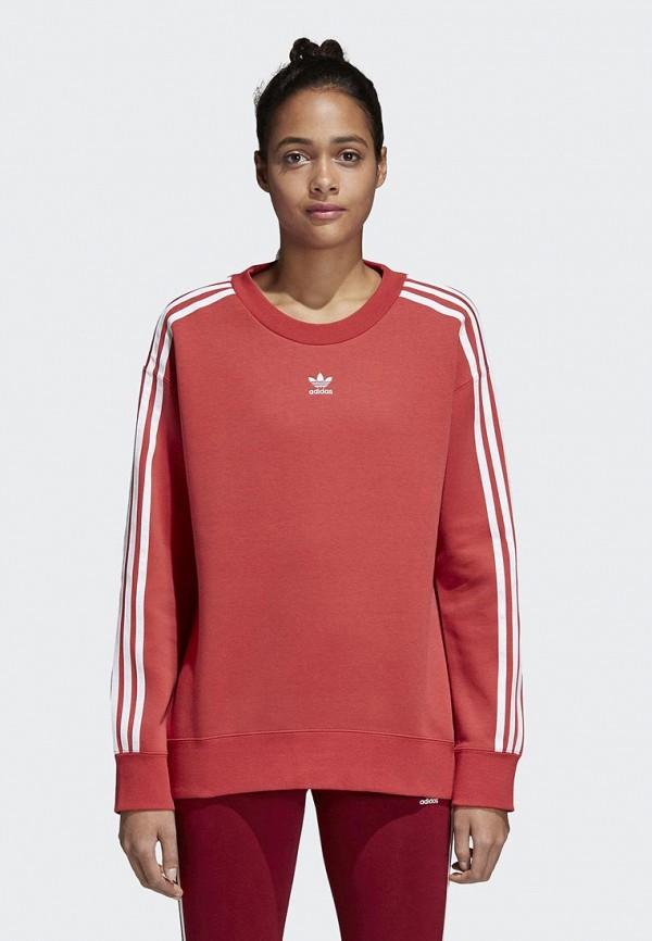 Свитшот adidas Originals adidas Originals AD093EWALOX4 свитшот adidas originals adidas originals ad093emhes09